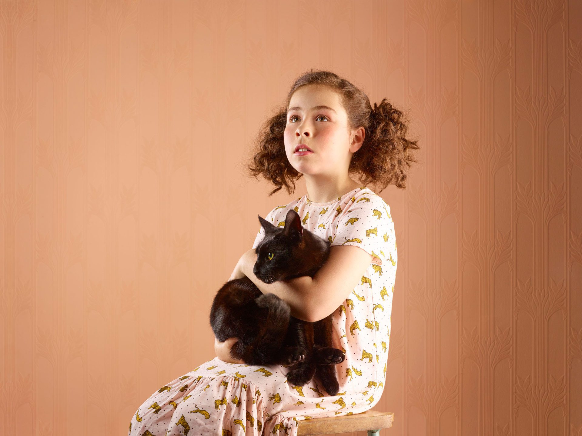 kids and pets – girl seated holding black cat brown background – Shaw & Shaw Photography – Shaw and Shaw photographers photography Manchester