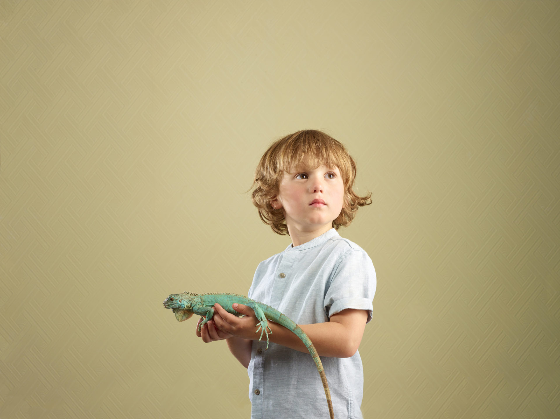 kids and pets – boy holding an iguana lizard – Shaw & Shaw Photography – Shaw and Shaw photographers photography Manchester