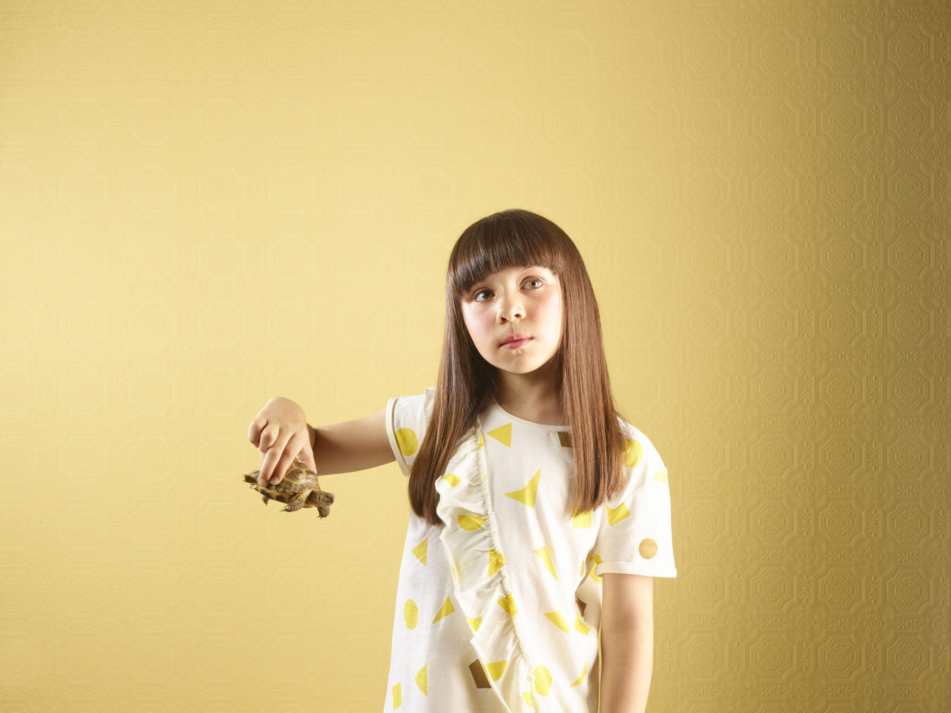 kids and pets – girl holding a tortoise – Shaw & Shaw Photography – Shaw and Shaw photographers photography Manchester